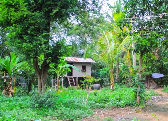 Stilt house