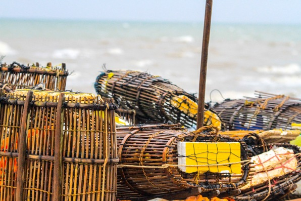 I think these are baskets for catching fish and other sea animals.