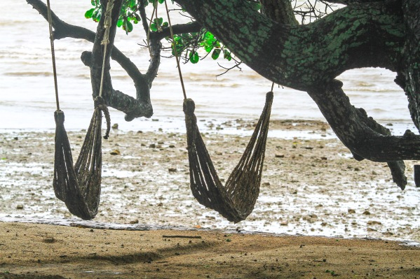 Wet hammocks by the sea.