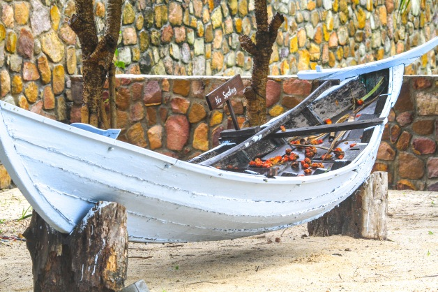 Hand made boat hollowed out from a tree trunk.