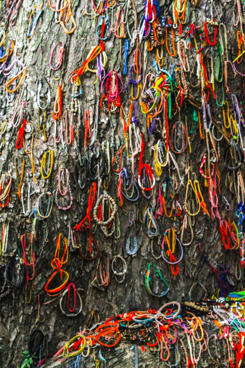 Monk blessed string bracelets cover the tree.