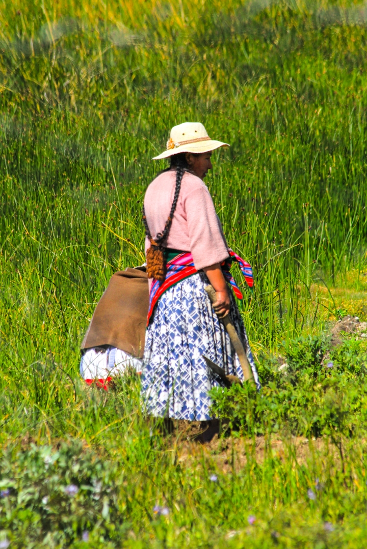 Lady working in the field near the reed boat.